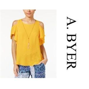 A. Byer